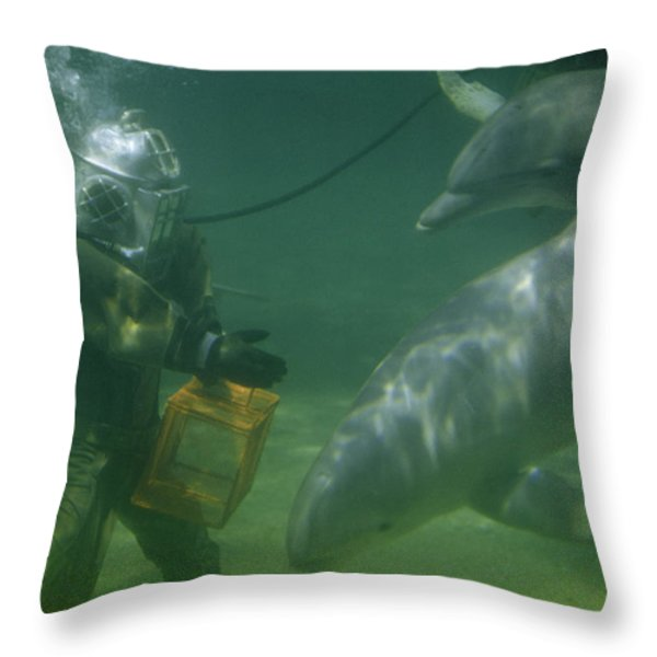 Dolphins Hover Near A Diver Holding An Throw Pillow by Luis Marden