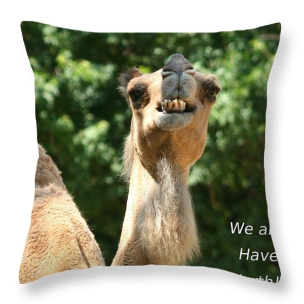 Dont Be Hatin Throw Pillow by David Dunham