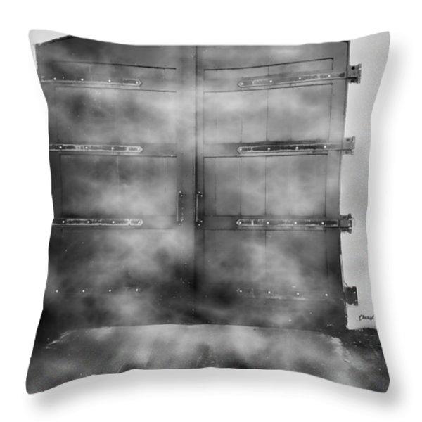 Door 3 Throw Pillow by Cheryl Young