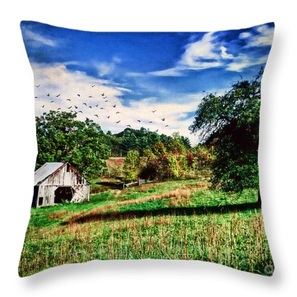 Down On The Farm Throw Pillow by Darren Fisher
