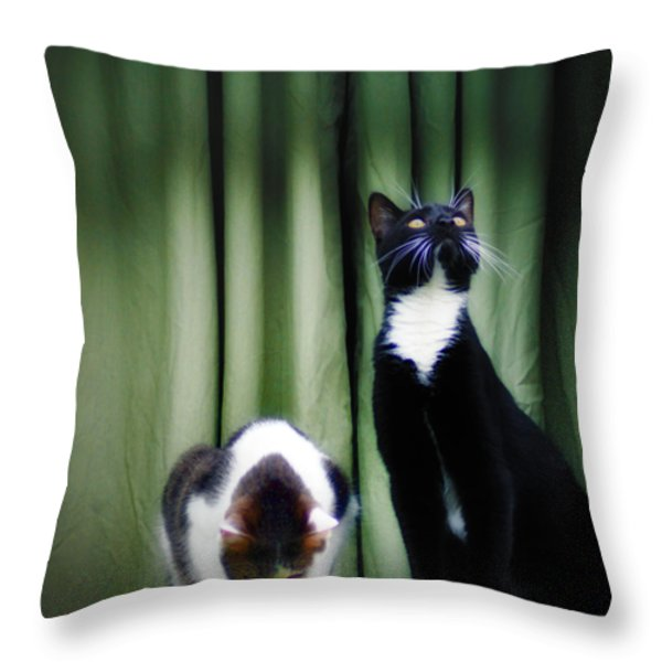 Down Or Up Throw Pillow by Bill Cannon