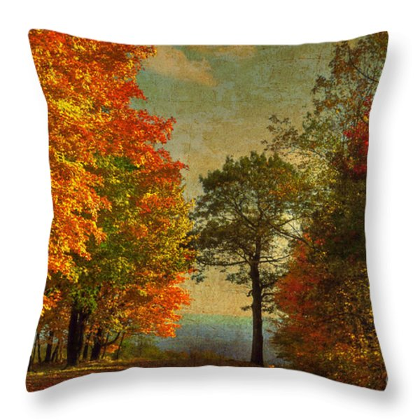 Down the Mountain Throw Pillow by Lois Bryan