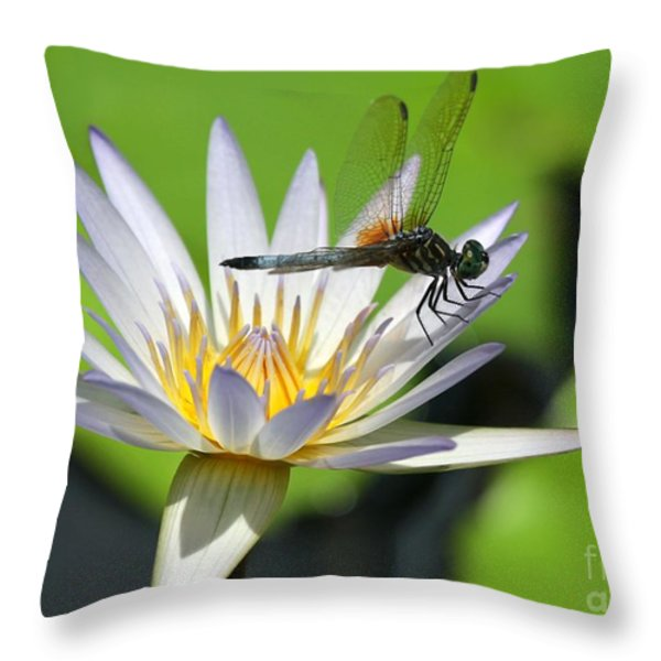 Dragonfly And The Water Lily Throw Pillow by Sabrina L Ryan