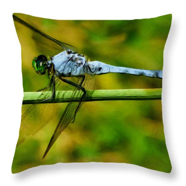 Dragonfly Throw Pillow by Jack Zulli