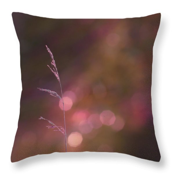 Dream It... Believe It Throw Pillow by Aimelle