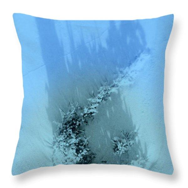 Dreams Of The Sea 2 Throw Pillow by Susanne Van Hulst