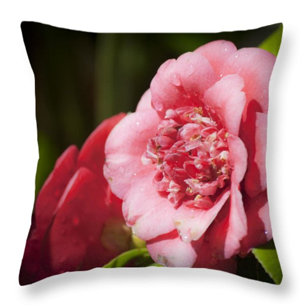 Dreamy Camellia Throw Pillow by Teresa Mucha