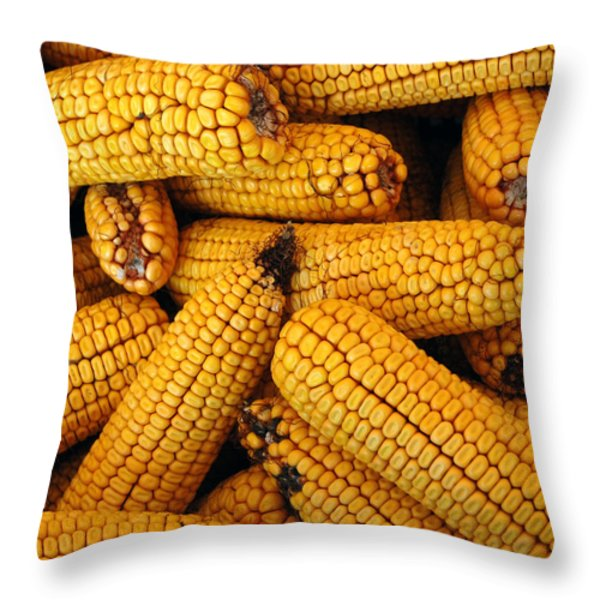 Dried Corn Cobs Throw Pillow by LeeAnn McLaneGoetz McLaneGoetzStudioLLCcom