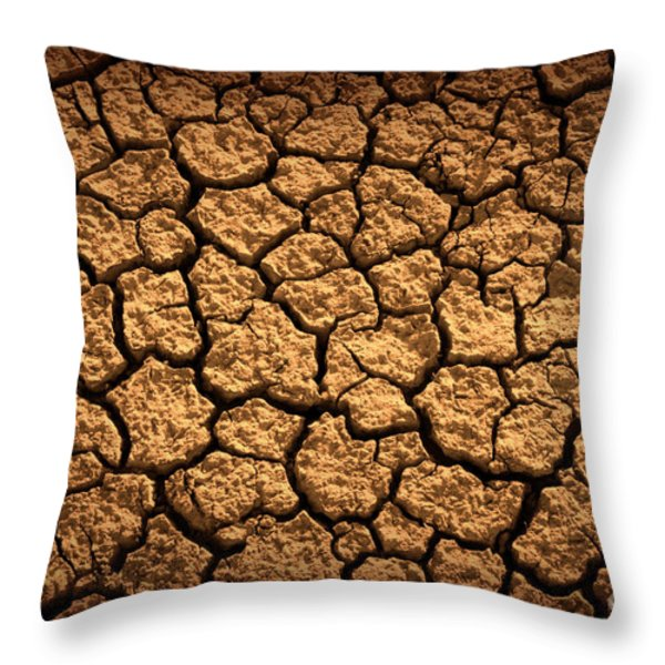 Dried Terrain Throw Pillow by Carlos Caetano