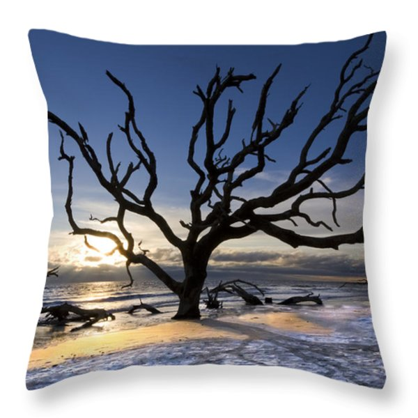Driftwood Beach at Dawn Throw Pillow by Debra and Dave Vanderlaan