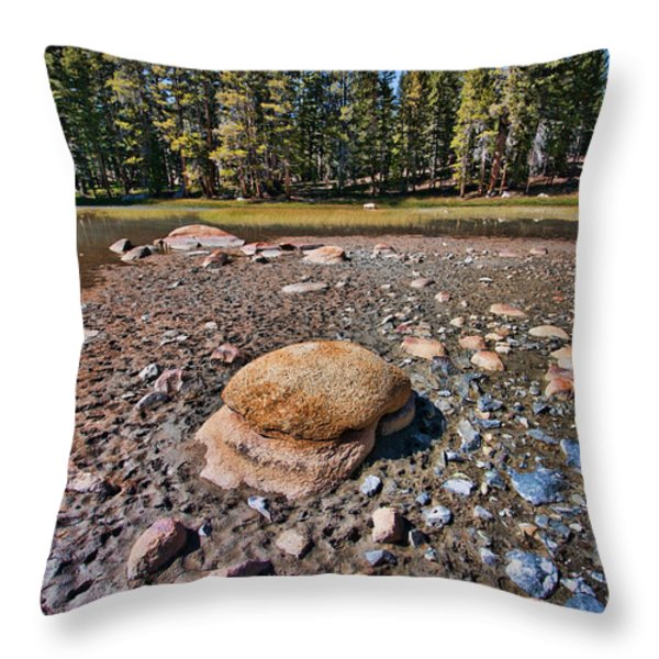 Dry Lake Throw Pillow by Bonnie Bruno
