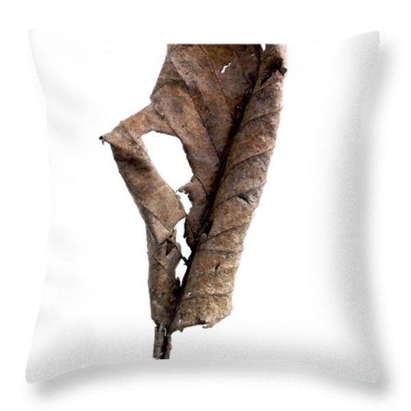 Dry leaf Throw Pillow by BERNARD JAUBERT
