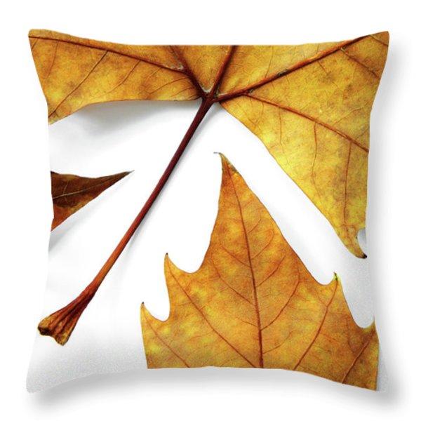 Dry Leafs Throw Pillow by Carlos Caetano