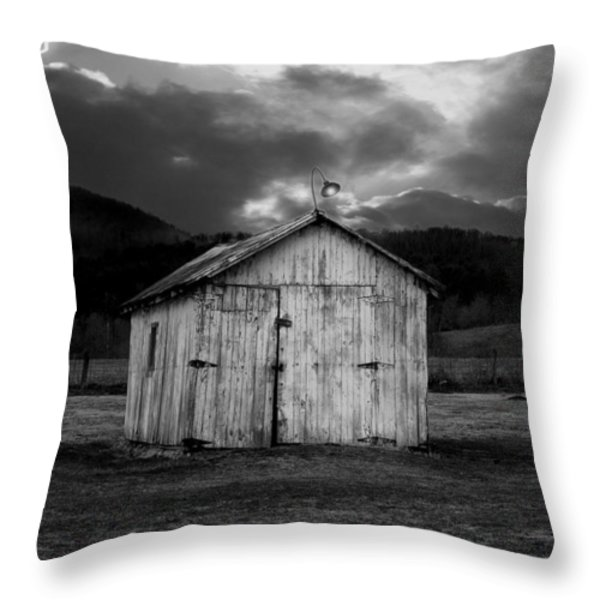Dry Storm Throw Pillow by Ron Jones