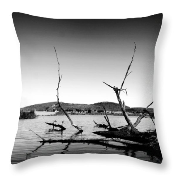 Dryden Lake New York Throw Pillow by Paul Ge