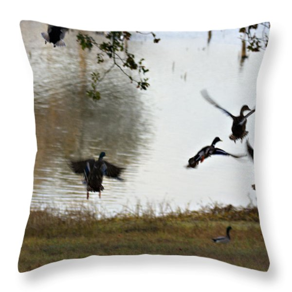 Duck Frenzy Throw Pillow by Douglas Barnard