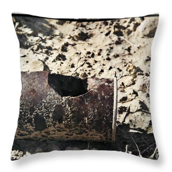 E V I D E N C E Throw Pillow by Charles Dobbs