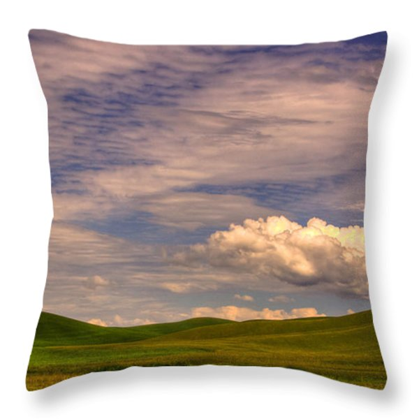 Early Summer Wheat In The Palouse Throw Pillow by David Patterson