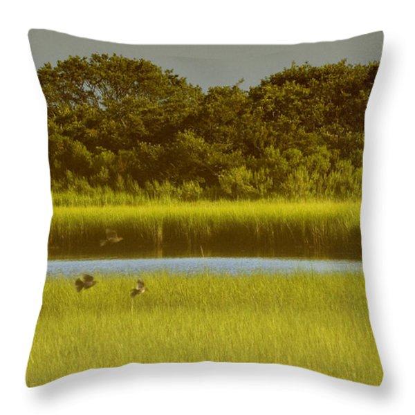 East Hampton Serenity Throw Pillow by Anahi DeCanio