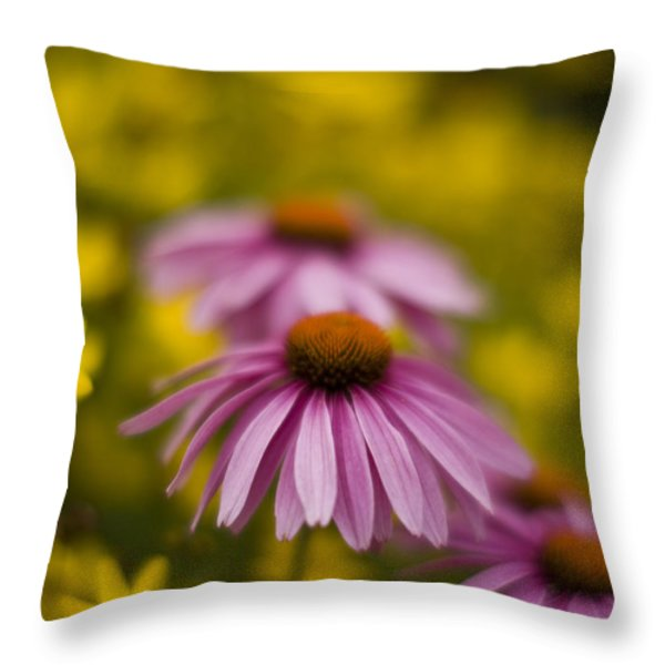 Echinacea Dreamy Throw Pillow by Mike Reid