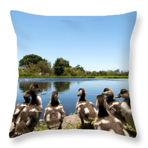 Egyptian geese Throw Pillow by Fabrizio Troiani