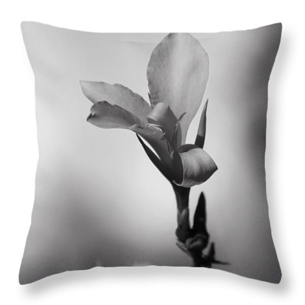 Elegantly Throw Pillow by Laurie Search