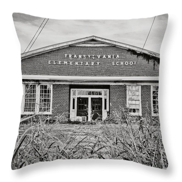 Elementary School Throw Pillow by Scott Pellegrin