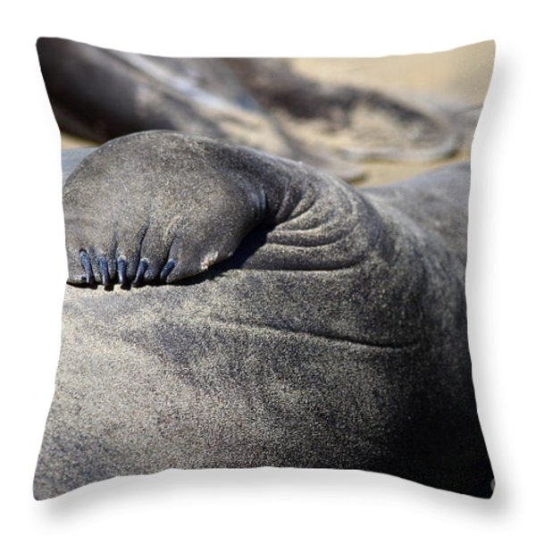 Elephant Seal Fin Nails . 7D16083 Throw Pillow by Wingsdomain Art and Photography