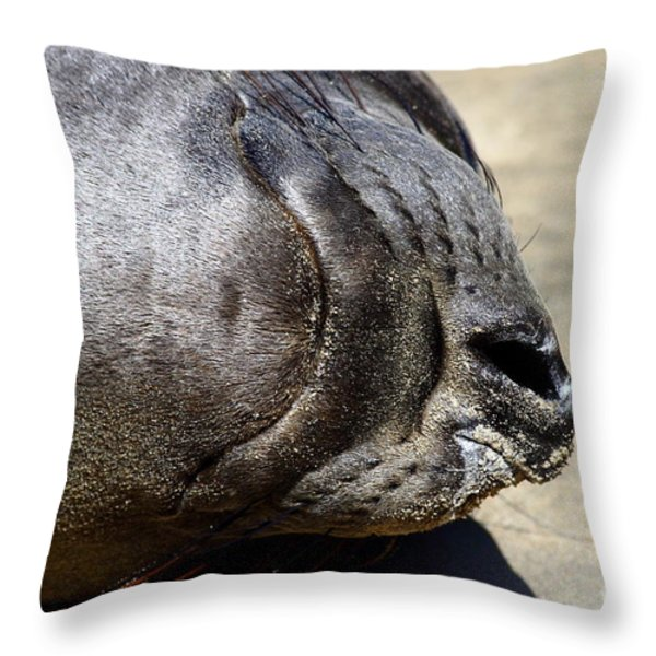 Elephant Seal Snout . 7D16085 Throw Pillow by Wingsdomain Art and Photography