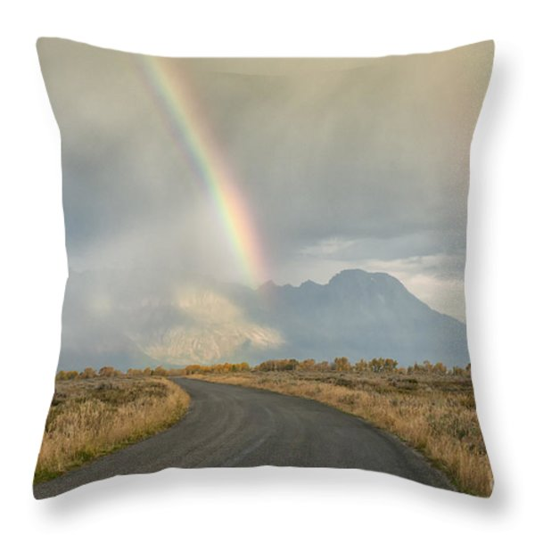End Of The Rainbow Throw Pillow by Sandra Bronstein