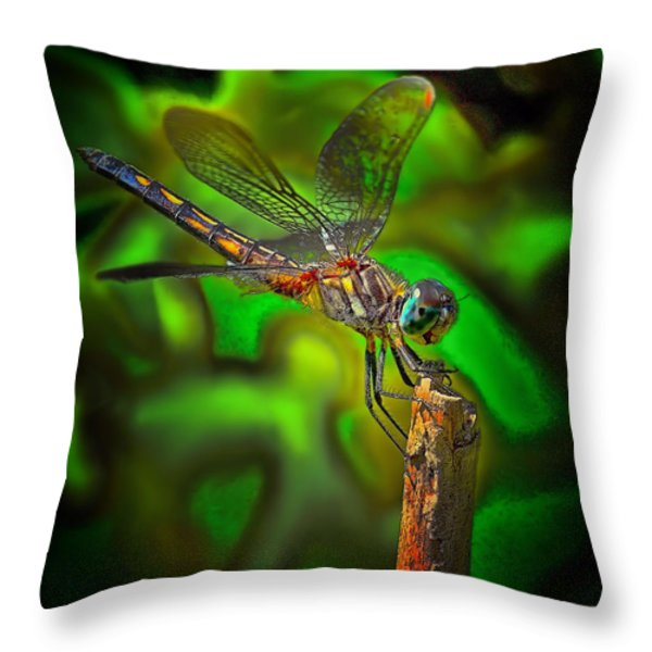 Enhanced Dragonfly Throw Pillow by Dave Sandt