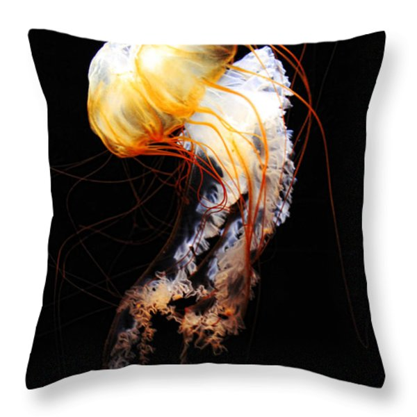 Enigma Throw Pillow by Andrew Paranavitana