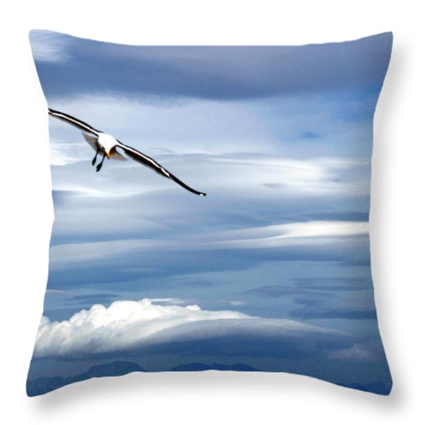 Enjoying The Sky Throw Pillow by Andrew  Hewett