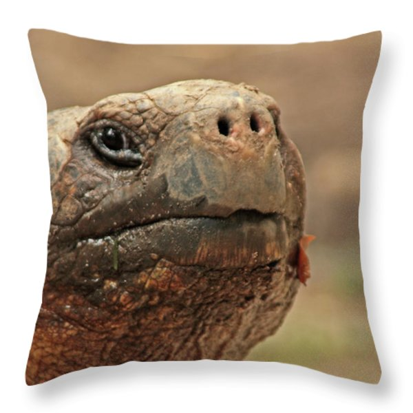ET Throw Pillow by Karol Livote