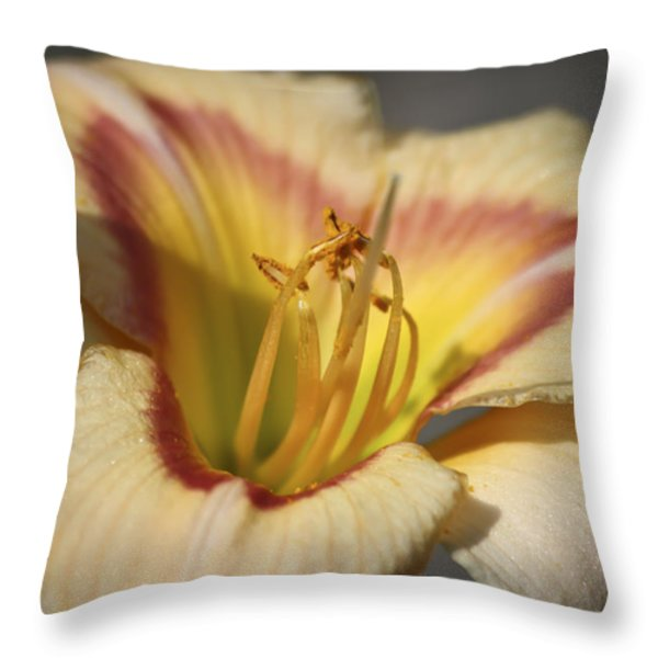 Ethel Brown Daylily 3 Throw Pillow by Teresa Mucha
