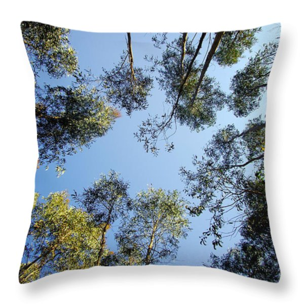 Eucalyptus Throw Pillow by Carlos Caetano