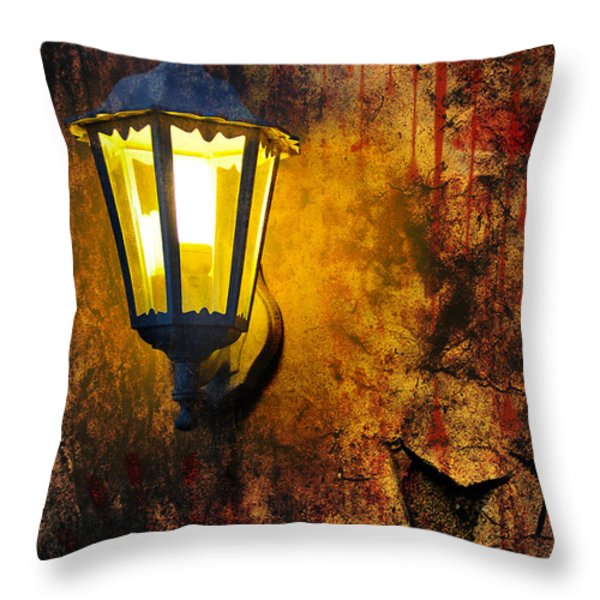 Evening Light And Wall Throw Pillow by Svetlana Sewell