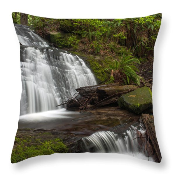 Evergreen Steps Throw Pillow by Mike Reid