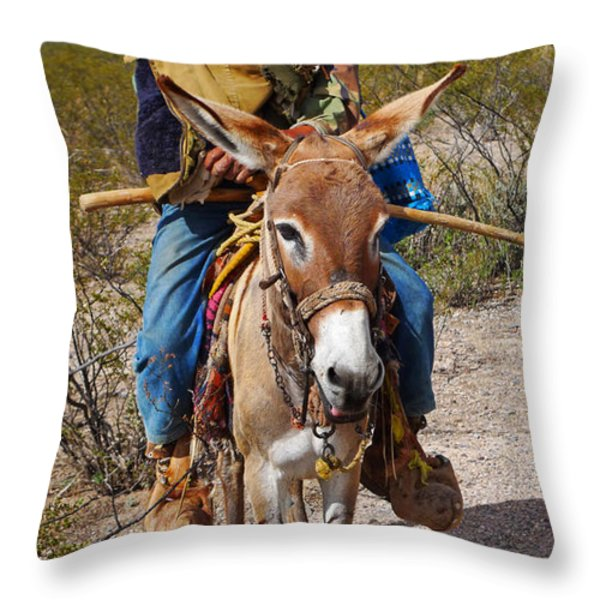Evuli Throw Pillow by Skip Hunt