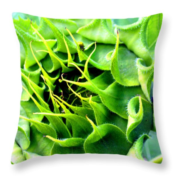 Exquisite Symetry Throw Pillow by Michael Durst