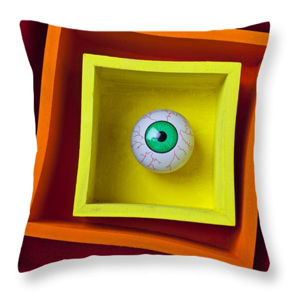 Eye In The Box Throw Pillow by Garry Gay