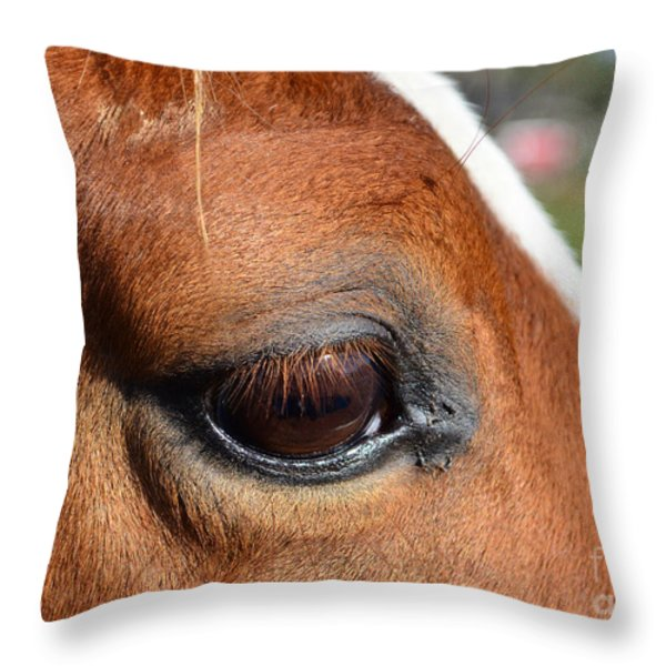 Eye Of The Horse Throw Pillow by Sandi OReilly