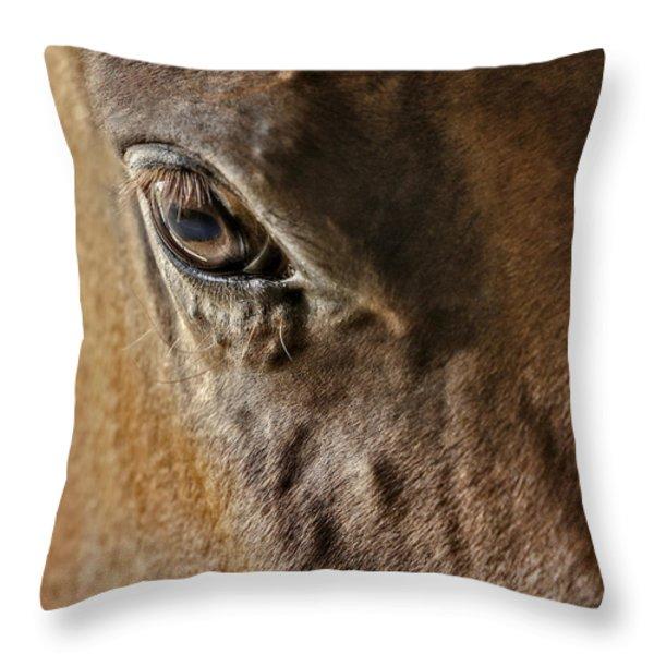 Eye Of The Horse Throw Pillow by Susan Candelario