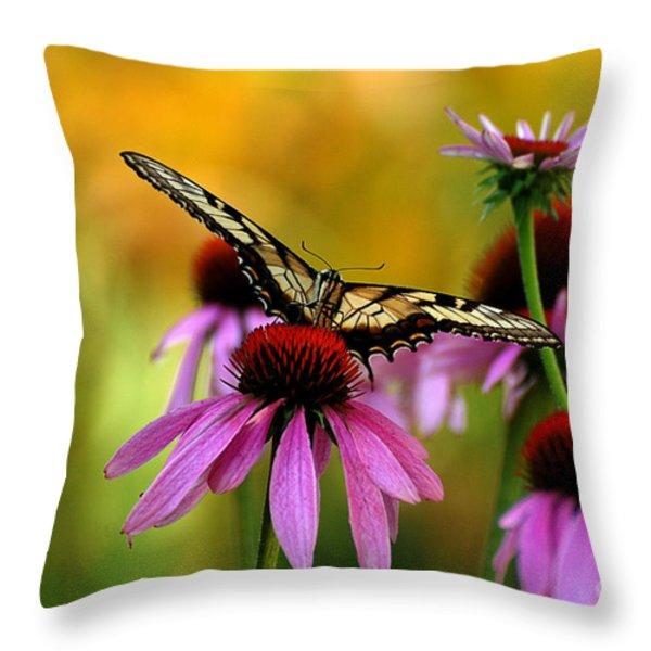 Eye To Eye Throw Pillow by Lois Bryan