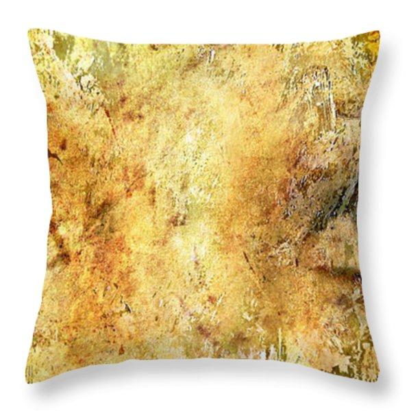 Eyes Of The Beheld Throw Pillow by Brett Pfister