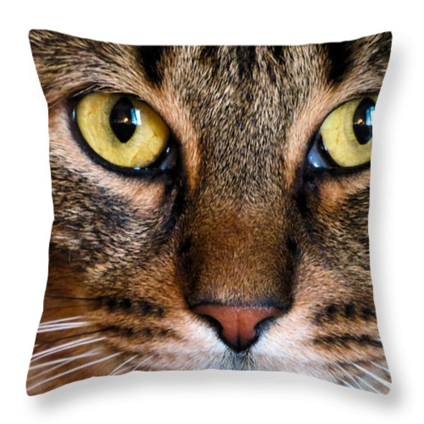 Face Framed Feline Throw Pillow by Michelle Milano
