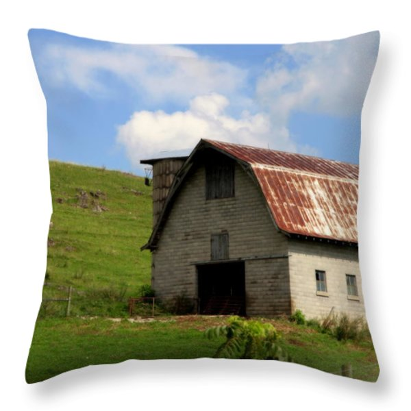 Faded Generations Throw Pillow by KAREN WILES