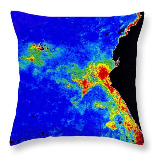 Fal-col Satellite Image Of Coastal Throw Pillow by Dr. Gene Feldman, NASA Goddard Space Flight Center
