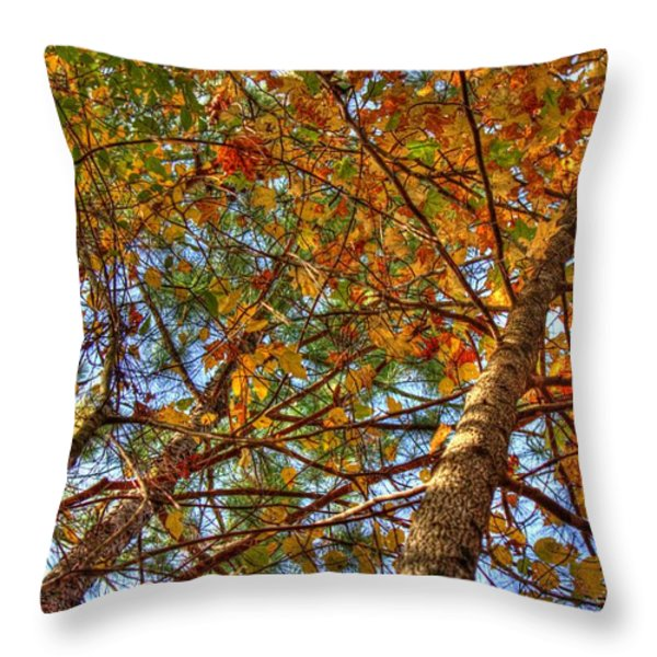 Fall Canopy Throw Pillow by Barry Jones