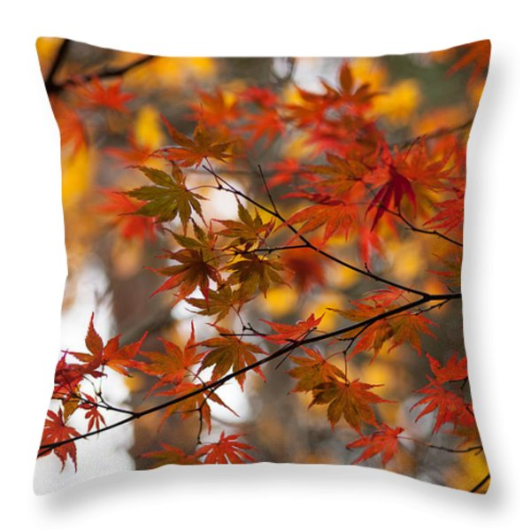 Fall Color Montage Throw Pillow by Mike Reid